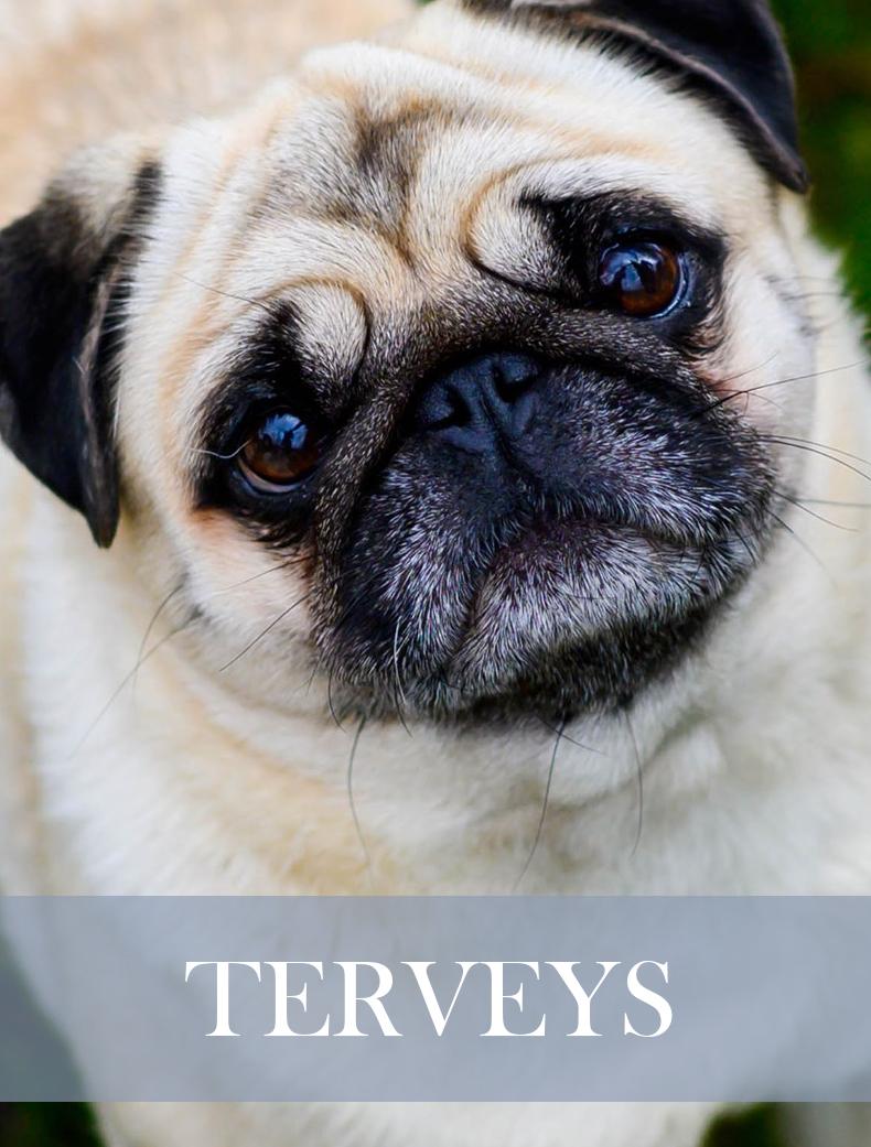 terveyss